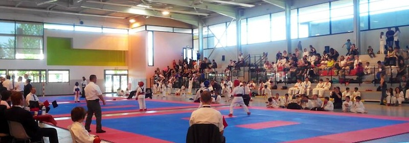 Karate club de Saint Maur - COUPE DE FRANCE KOFUKAN 2014